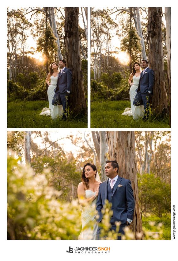 Wedding Blog 47
